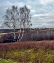 Russian countryside, rolling hills, forests, villages.
